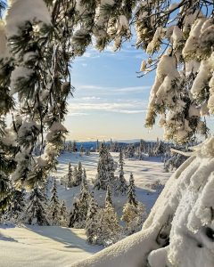 Landskap foto knep - vinter